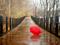 عکس پل خیس بارانی شاعرانه