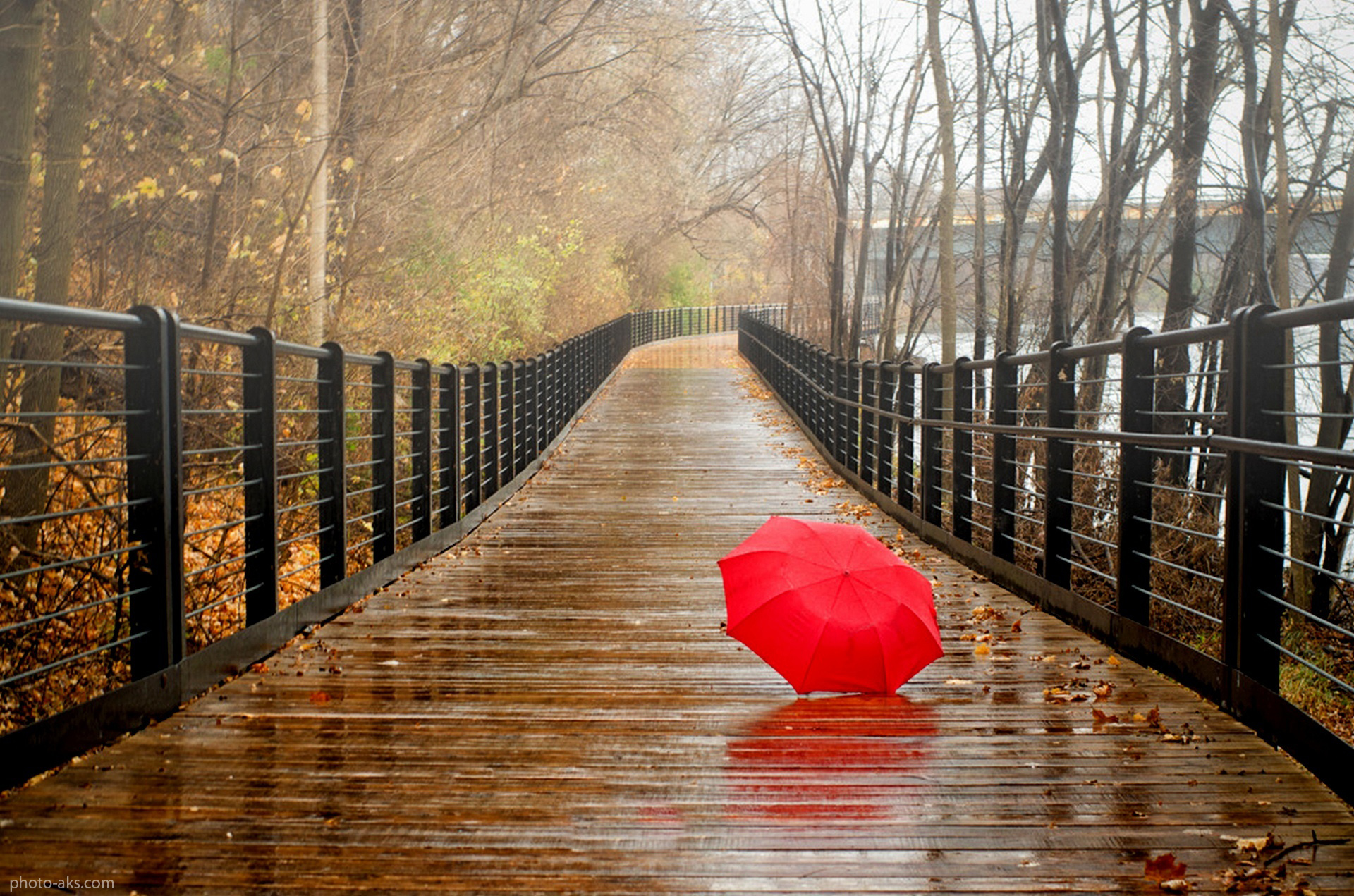http://pic.photo-aks.com/photo/nature/rain/large/Bridge_Red_Umbrella_Rain.jpg