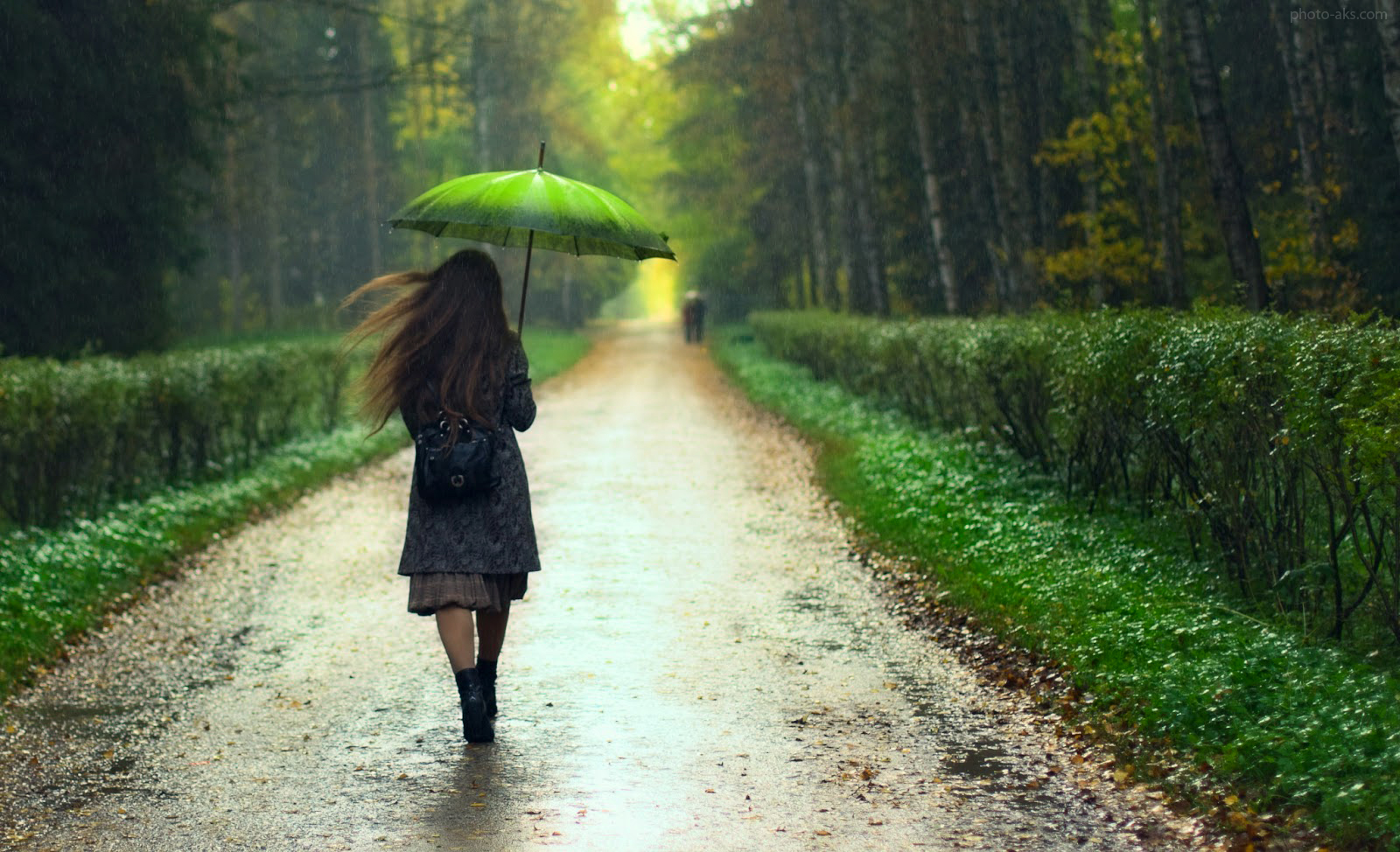 [تصویر:  girl_rain_forest_road.jpg]