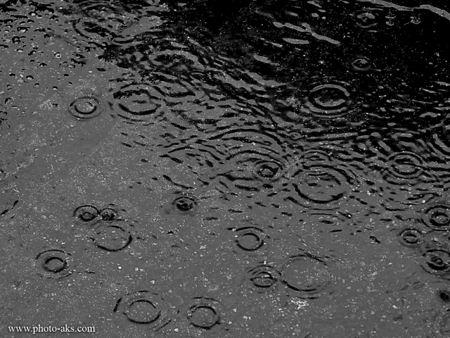 بارش باران روی آسفالت baran khiaban