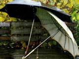 عکس پروفایل چتر زیر باران