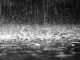 عکس بارش شدید باران
