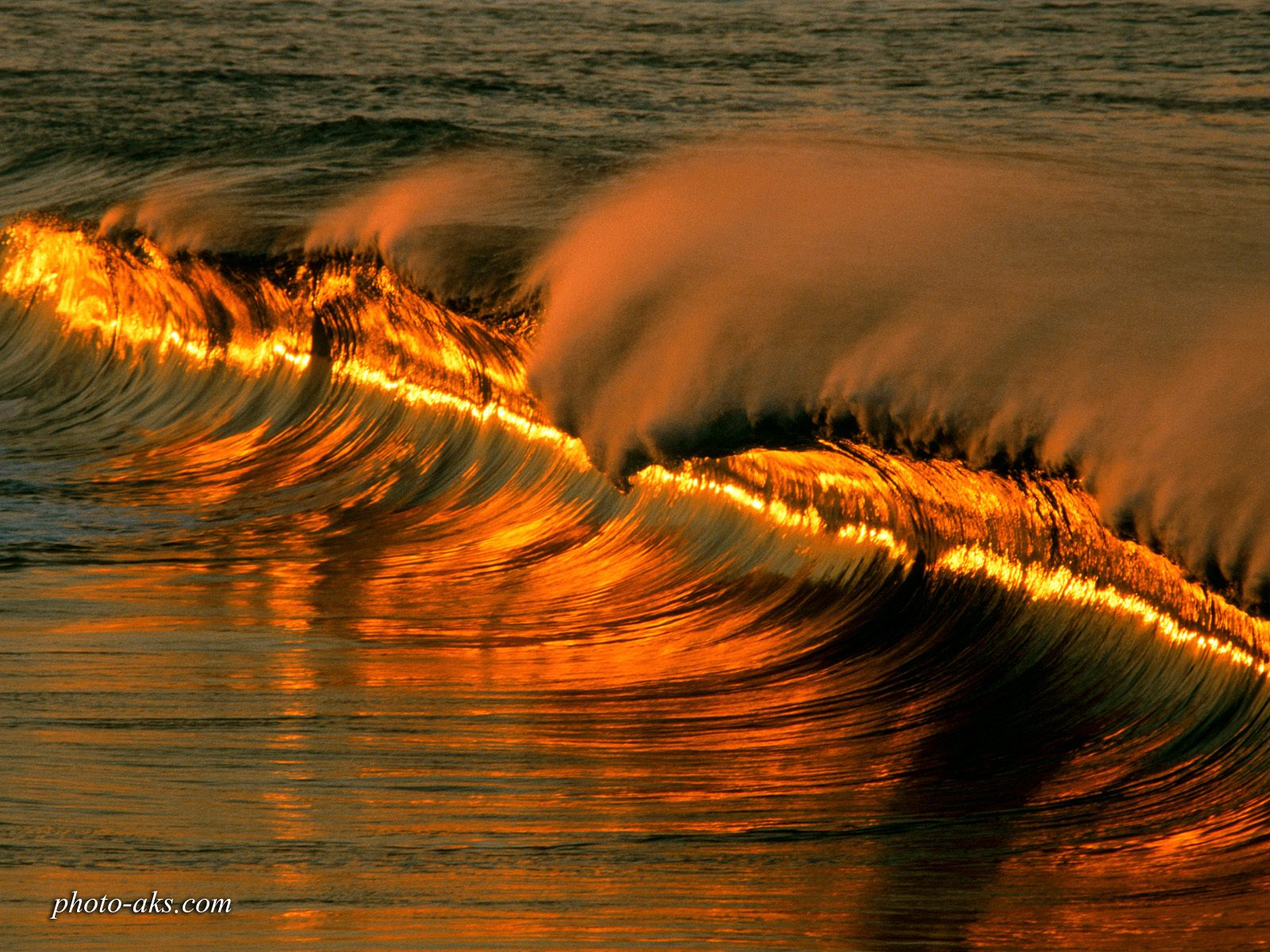 http://pic.photo-aks.com/photo/nature/sea-beach/large/sea-wave.jpg