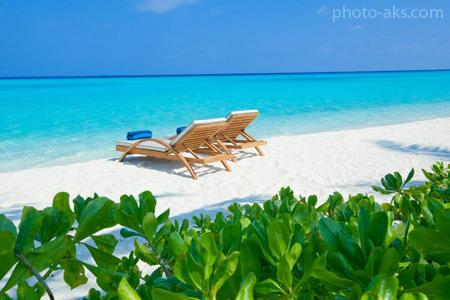 سواحل زیبای مالدیو beach maldives