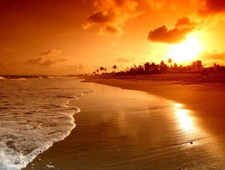 منظره زیبا غروب طلائی در ساحل beautiful golden sunset