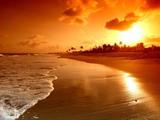 منظره زیبا غروب طلائی در ساحل