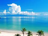 عکس تابستانی ساحل دریا