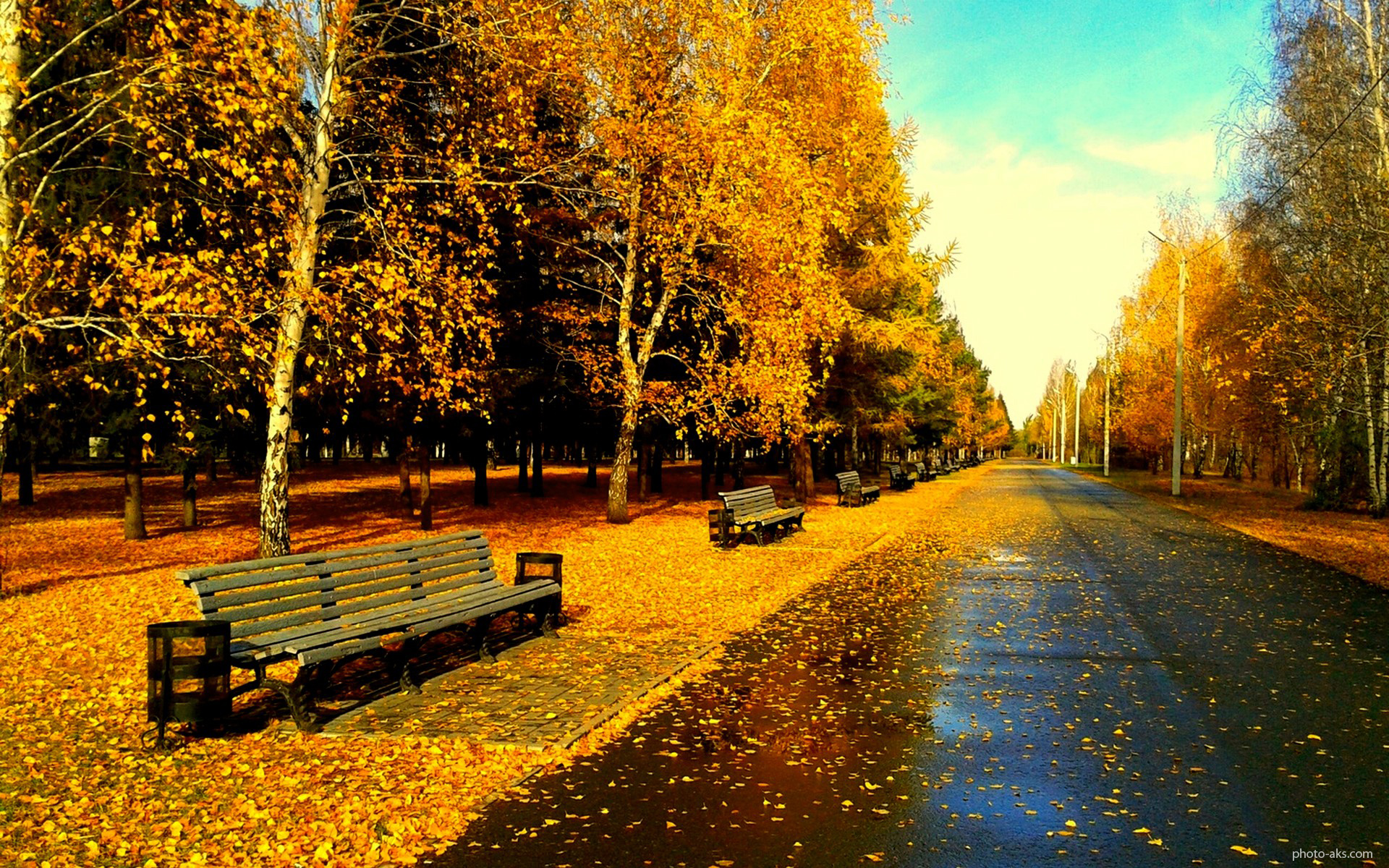 http://pic.photo-aks.com/photo/nature/season/autumn/large/park-after-rain-in_autumn.jpg