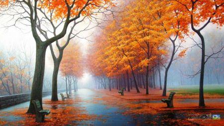 عکس رویایی از پارک در پائیز autumn nature in park