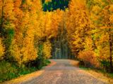 عکس های طبیعت پاییز 94
