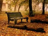 نیمکت خالی در پارک