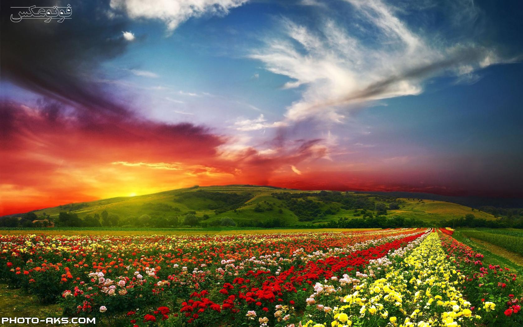 spring-nature-landscape.jpg