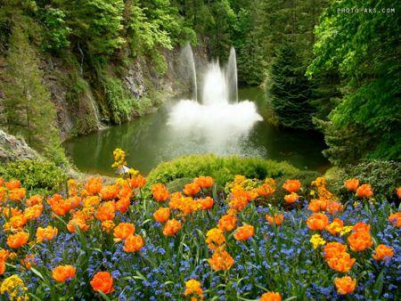 عکس بهاری Images of spring