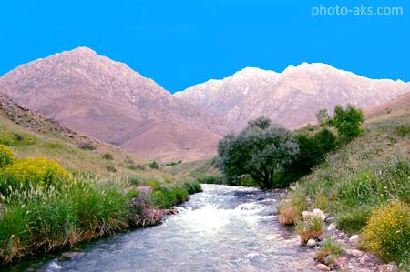 طبیعت ایران در فصل بهار iran beautiful nature spring