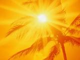 عکس تابش نور آفتاب در تابستان داغ
