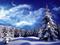 والپیپر طبیعت برفی زمستان