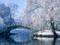تصویر زیبا از پل در زمستان