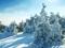 طبیعت زمستان و برف