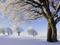 منظره برف زمستانی روی درخت