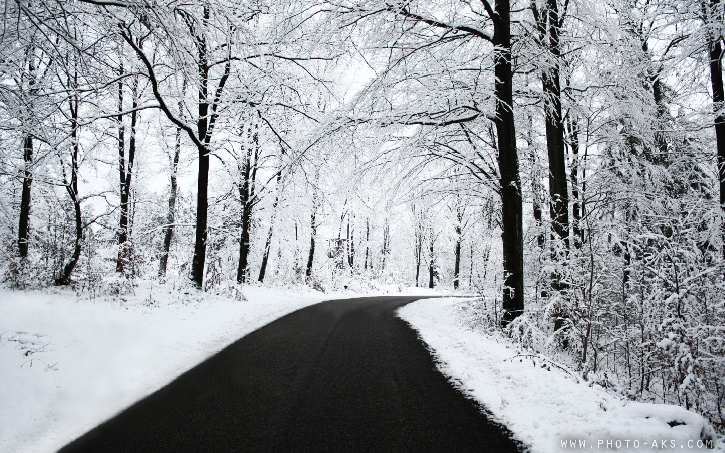 http://pic.photo-aks.com/photo/nature/season/winter/large/Winter_Road.jpg