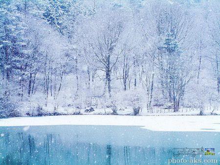 منظره بارش برف در زمستان winter nature hd wallpaper
