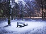 نیمکت خالی زیر برف زمستانی
