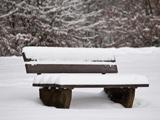 نیمکت برفی در پارک زمستانی
