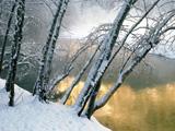 منظره برفی بسیار زیبا