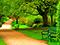 عکس پارک جنگلی سرسبز