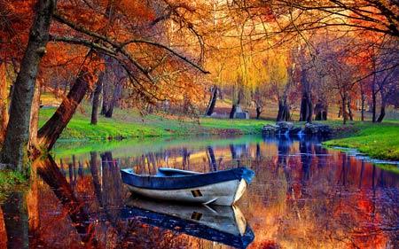 منظره زیبای قایق در جنگل پاییزی boat in river jungle