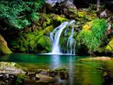 منظره زیبا از آبشار در طبیعت جنگل
