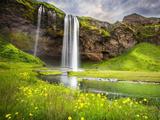منظره آبشار و طبیعت سرسبز