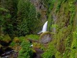 منظره طبیعت آبشار سرسبز زیبا