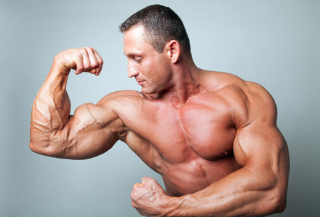 عضلات ورزیده جلوبازو بدنساز muscles trained
