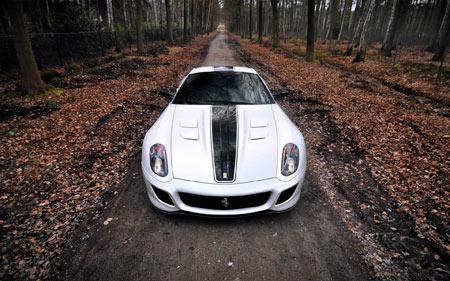 عکس ماشین فراری جاده جنگلی ferrari 599 gto car front
