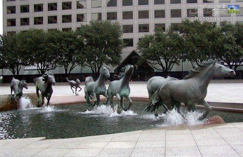 مجسمه های جالب سنگی از اسب ها در باشگاه کولیناس