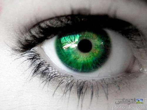 عکس زیباترین چشم سبز