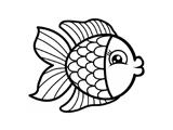 طرح رنگ آمیزی ماهی