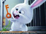 عکس کارتونی خرگوش بامزه سفید